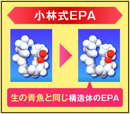 小林式EPA…生の青魚と同じ構造体のEPA