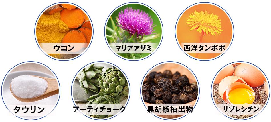 ウコン、マリアアザミ、西洋タンポポ、タウリン、アーティチョーク、黒コショウ抽出物、リゾレシチン